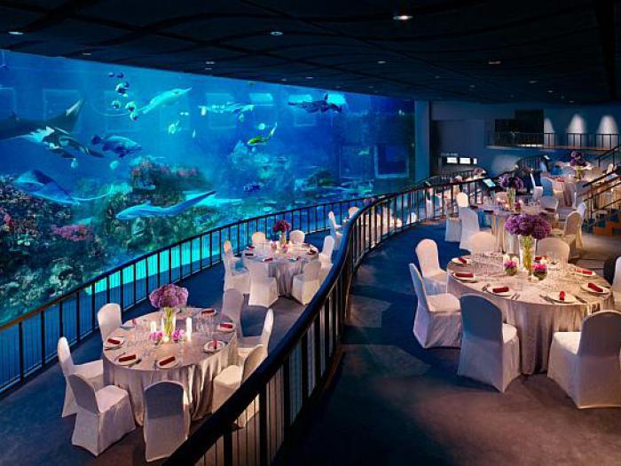 Ресторан в океанариуме